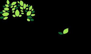 Réalisation du logo de Yogadvisor